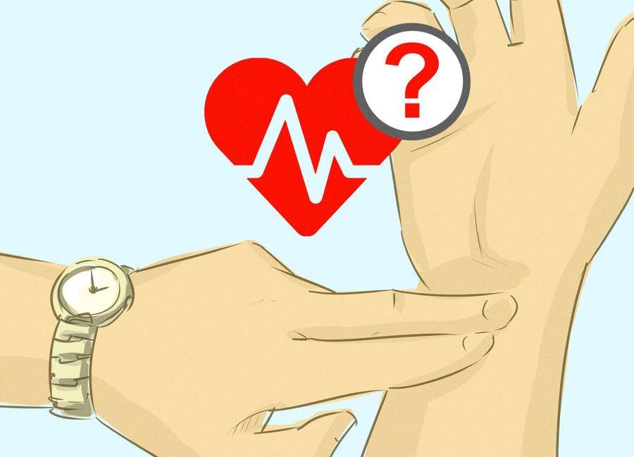 как мерить пульс 4