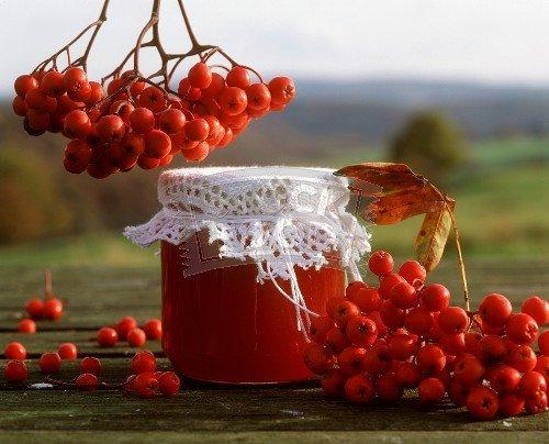 Сок из рябины красной