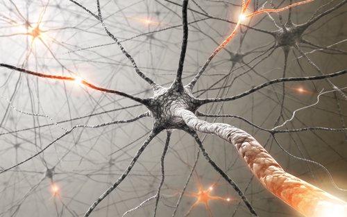 еще нейроны