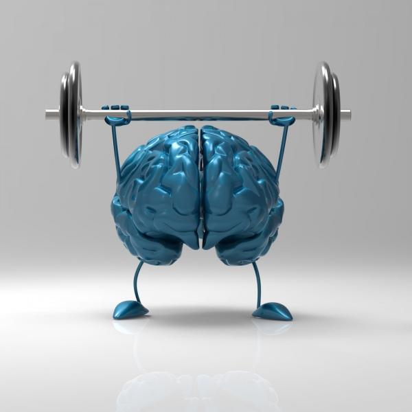спорт меняет мозг