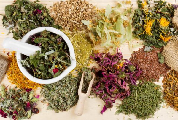 Лекарственные растения и травы