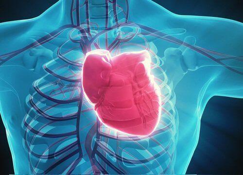 сердце может быть больным