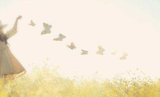 легкие бабочки