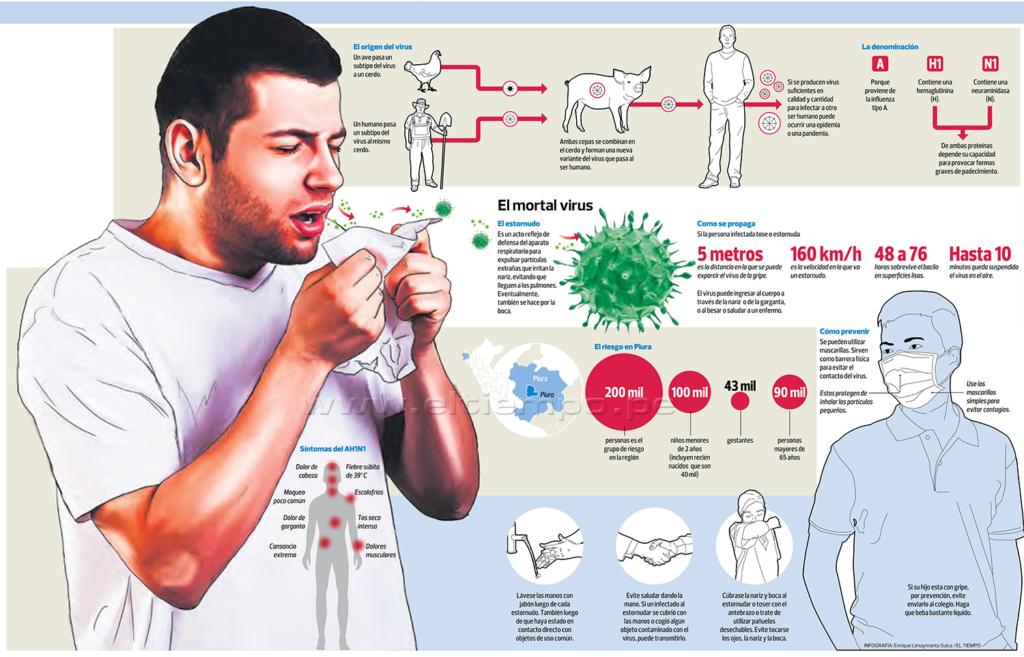 Свиной грипп АH1N1 Инфографика