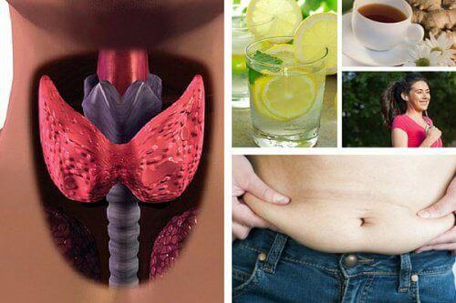 похудеть, если у вас гипотиреоз
