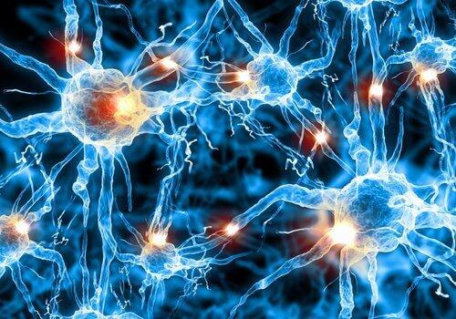 выявление болезни Альцгеймера