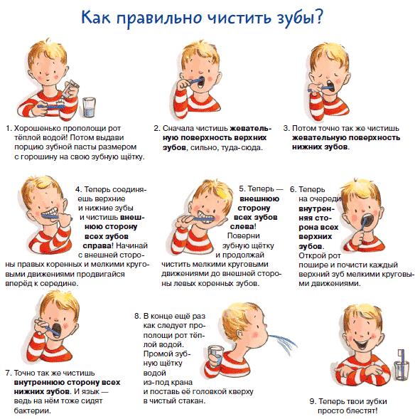 инфографика как ребенку чистить зубы