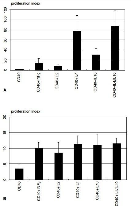 Роль Th2-цитокинов в патогенезе MALT-лимфомы
