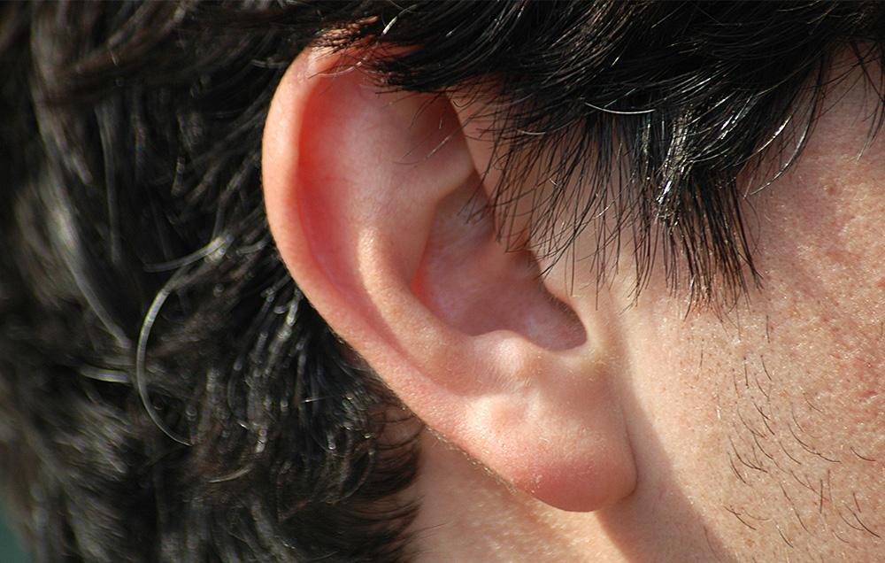 мочка уха