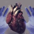 Патология сердечно-сосудистой системы при АНЦА-ассоциированных системных васкулитах