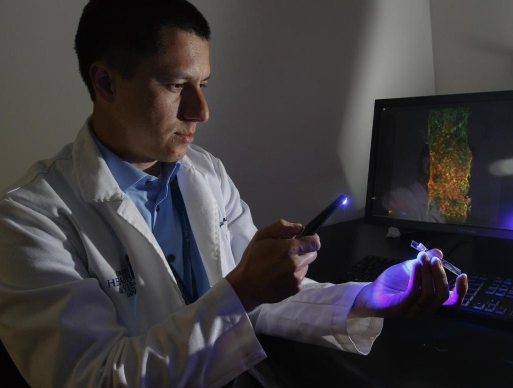 Ученые имплантировали искусственные сосуды