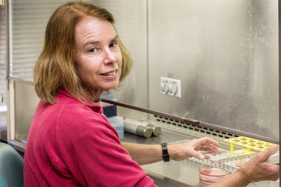 Памела Махер, старший научный сотрудник лаборатории клеточной нейробиологии Солка