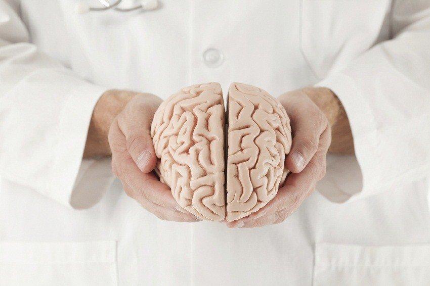 как поддерживать мозг