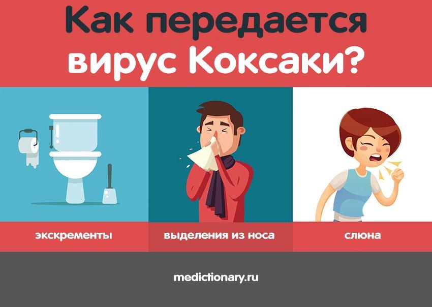 Как передается вирус Коксаки - инфографика