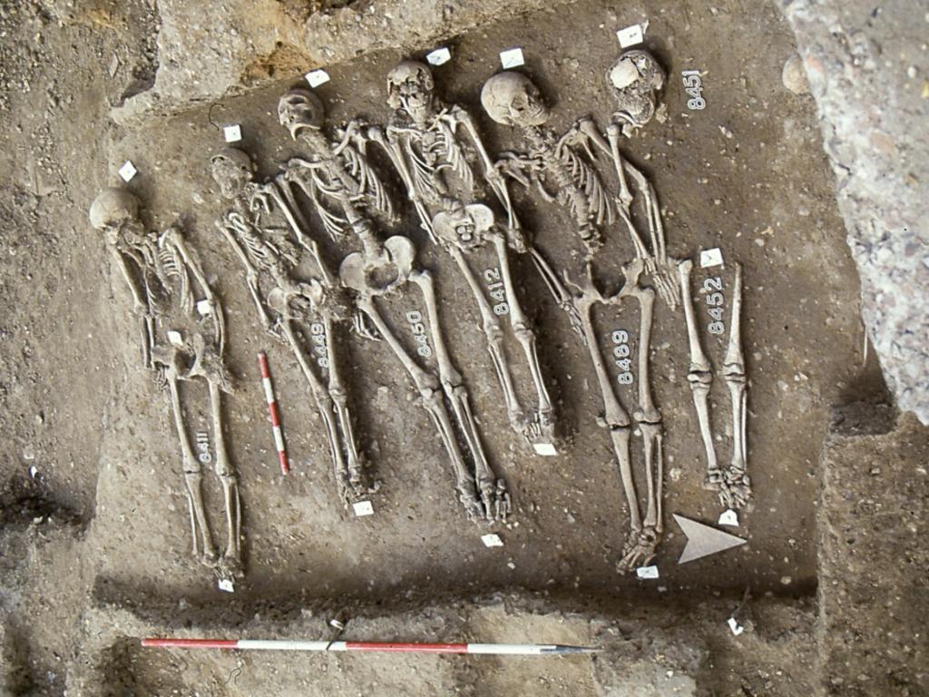 могила средневековой чумы