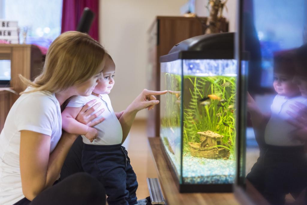 аквариум для детей