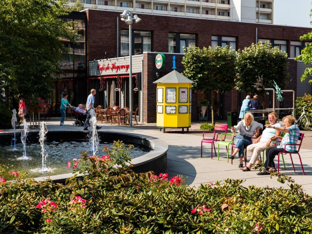 площадь в голландском поселении для больных деменцией