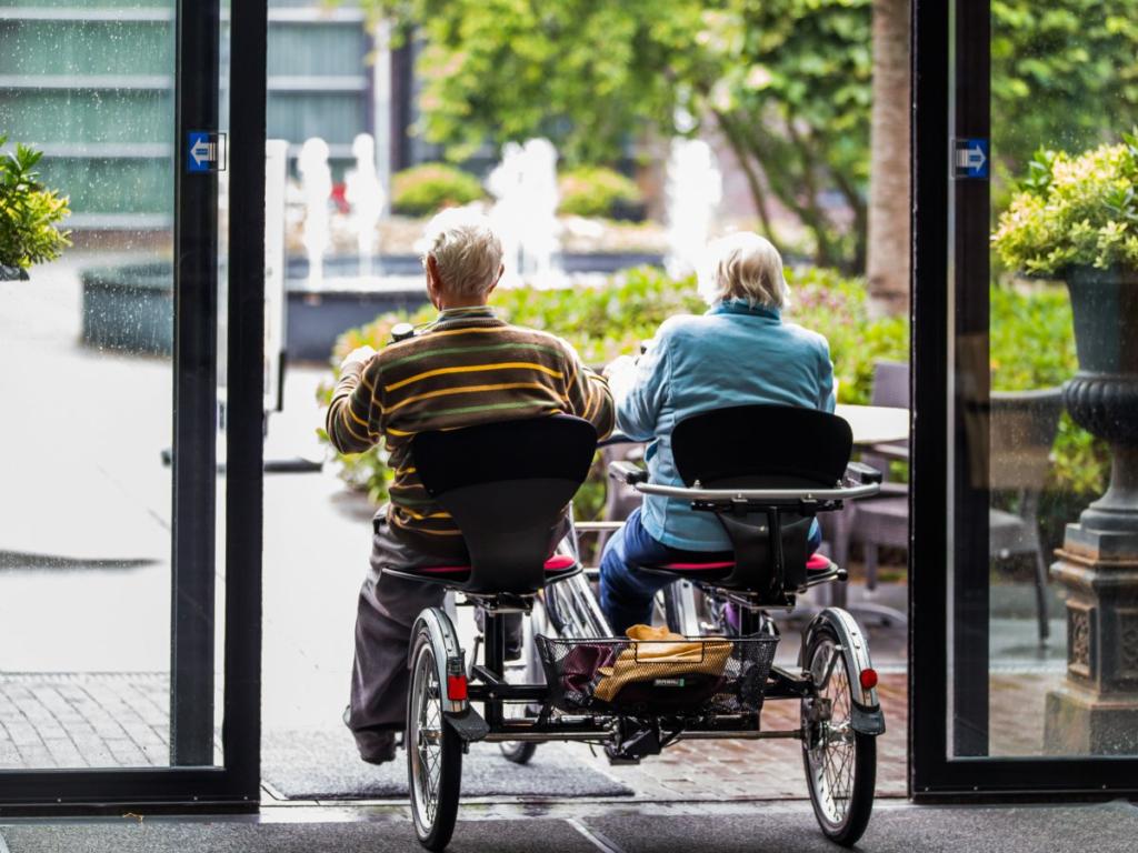 больные в голландском поселении для больных деменцией