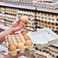 Как сальмонелла попадает в яйца?