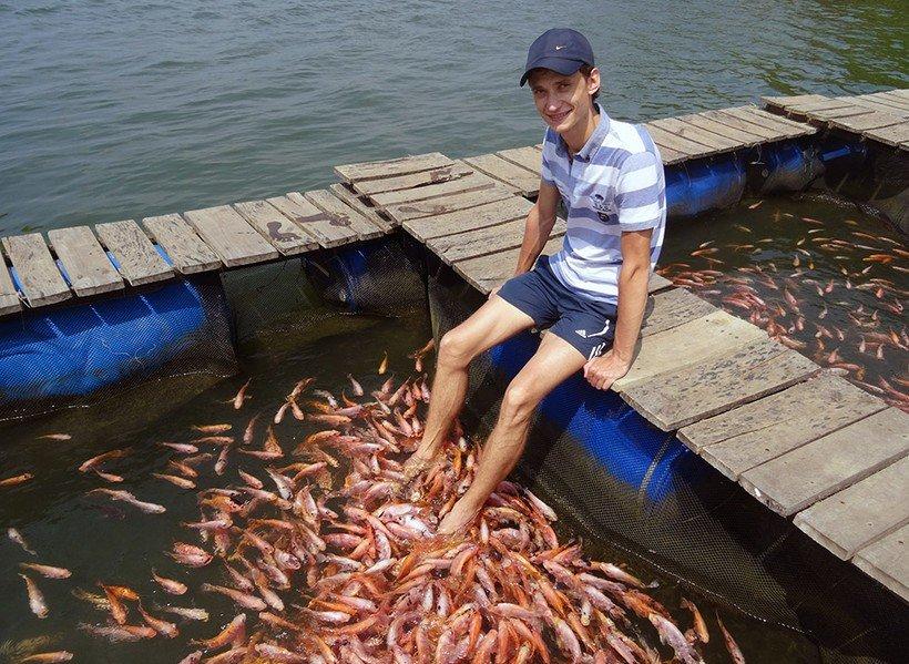 Рыбный педикюр