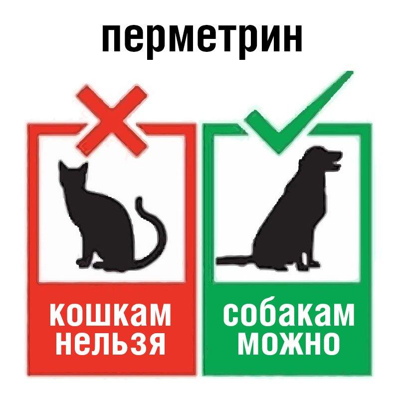 перметрин для собак но не для кошек
