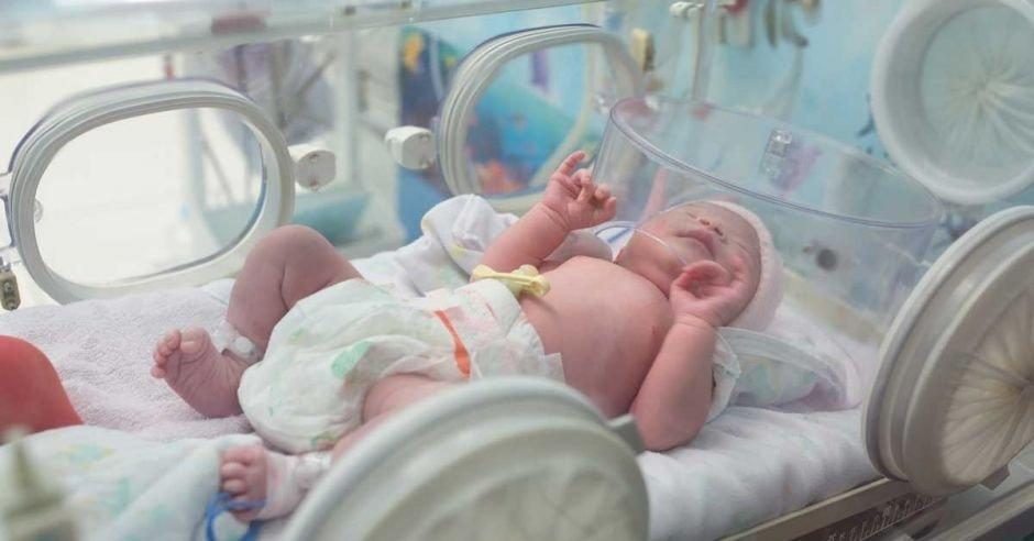 новорожденный в инкубаторе