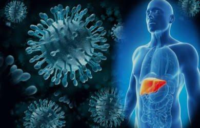 Софосбувир для лечения гепатита