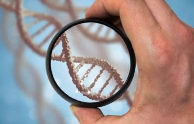Почему ДНК тест так популярен